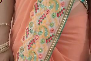 Diva Drape Saree Debilitating   Composite &amp_ Steelyard Sari Blouse In New � la mode Like one another Drape [720p]