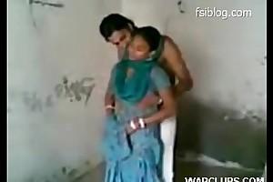 Punjabi hawt confidential sexual intercourse