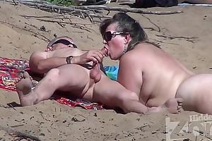 Blowjob above a nudist seashore